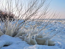Curonian Spit shore in winter, Lithuania Stock Image