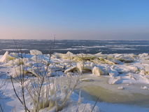 Curonian Spit shore in winter, Lithuania Royalty Free Stock Images