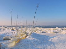 Curonian Spit shore in winter, Lithuania Royalty Free Stock Photos