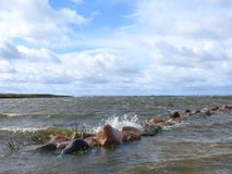 Curonian spit windy day, Lithuania royalty free stock photography