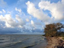 Curonian spit windy day, Lithuania stock photos