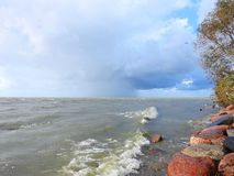 Curonian spit windy day, Lithuania royalty free stock images