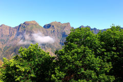 Curral das Freiras, Madeira island, Portugal Stock Photography