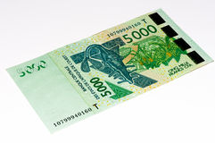 Currancy banknote of Africa Royalty Free Stock Photos