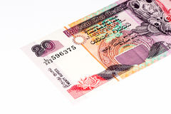 Currancy banknote of Asia. 20 Sri Lankan rupee bank note. Rupees is the national currency of Sri Lanka Royalty Free Stock Images