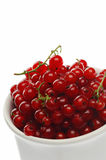 Currant Stock Photos