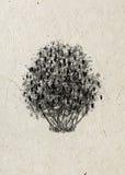 currant Arbusto do desenho em um papel de arroz bege ilustração royalty free