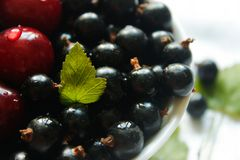 Currant berries and cherries on a white plate and white tablecloth Royalty Free Stock Photos