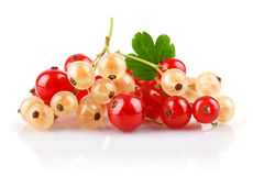 Currant berries with green leaf Stock Photo
