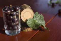 Currant. Black currants in a glass. Still life. Macro photo Royalty Free Stock Photos