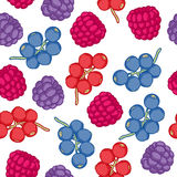 Currant and blackberry seamless pattern Royalty Free Stock Image