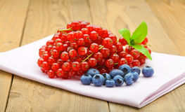 Currant and blueberry Royalty Free Stock Photography