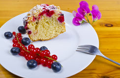 Currant blueberry cake. A Fresh summery currant blueberry cake dessert Royalty Free Stock Photo