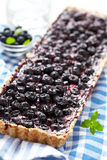 Currant Blueberry Pie Royalty Free Stock Photos