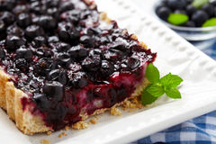 Currant Blueberry Pie Royalty Free Stock Photo