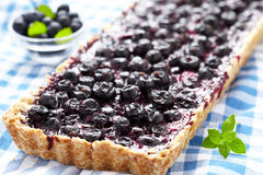 Currant Blueberry Pie Royalty Free Stock Images