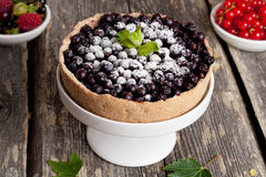 Currant Blueberry Pie with Oatmeal Crust. Close up, horizontal Royalty Free Stock Image