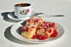 Currant cake Royalty Free Stock Images