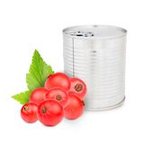Currant can Royalty Free Stock Photography