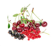Currant and cherry Royalty Free Stock Photos