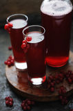 Currant cocktail with berries Stock Image
