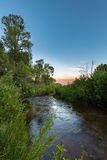 Currant Creek after dusk. This photo was taken of Currant Creek after dusk and has trees and river plants Stock Photography