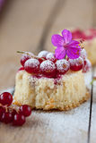 Currant cupcake Stock Photography