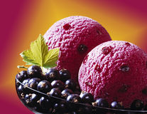 Currant ice cream Royalty Free Stock Image