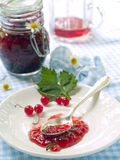 Currant jam. Spoon with currant jam on plate royalty free stock image