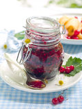 Currant jam. Red currant and black currant jam in jam-jar royalty free stock photos