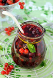 Currant jam Royalty Free Stock Photography