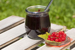 Currant jam Royalty Free Stock Images