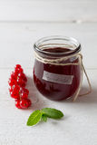 Currant jam in a jar Stock Photography