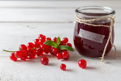 Currant jam in a jar Royalty Free Stock Image