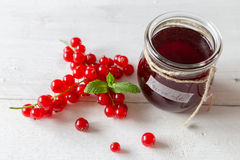 Currant jam in a jar. With cord stock photography