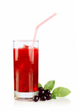 Currant juice Royalty Free Stock Photo