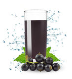 Currant juice Royalty Free Stock Photography