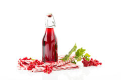 Currant juice. On white background stock images