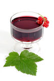 Currant Liqueur. A glass of currant liqueur with garnish on light background stock images