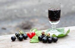 Currant liqueur. Creme de cassis in crystal glass stock photos