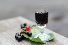 Currant liqueur. Creme de cassis in crystal glass Stock Image
