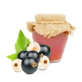 Currant product Stock Photography