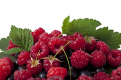 Currant and raspberry Stock Photos