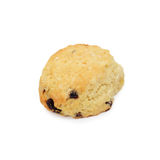 Currant scone. Currant scone isolated on white Royalty Free Stock Photos
