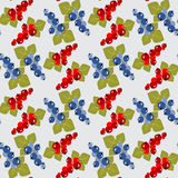 Currant seamless pattern Royalty Free Stock Images