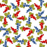 Currant seamless pattern Royalty Free Stock Photo