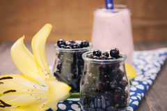 Currant smoothie Stock Image