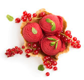 Currant sorbet in a wafer bowl, view from above Royalty Free Stock Photography