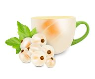 Currant tea Stock Image