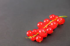 currants Fotografia de Stock Royalty Free